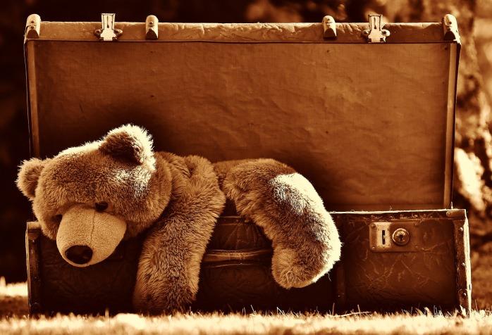 luggage-1799224_1920