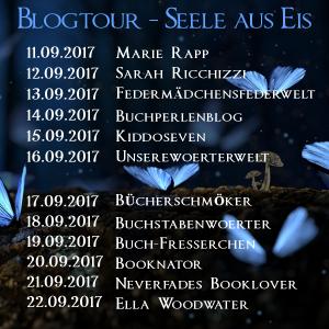 Blogtourbanner - Seele_aus_Eis_Übersicht 1-1