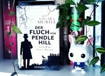 oscar_de_muriel_Fluch_pendle_hill