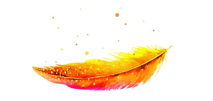 phoenixfeder.jpg