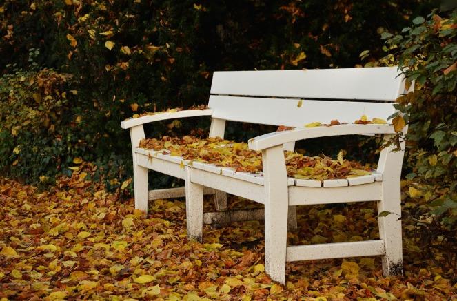 park-bench-1794181_1280.jpg