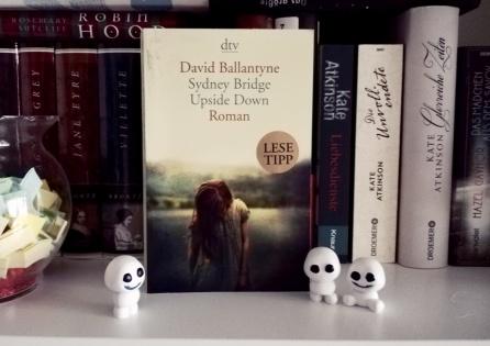 david_ballantyne_sydney_bridge_upside_down