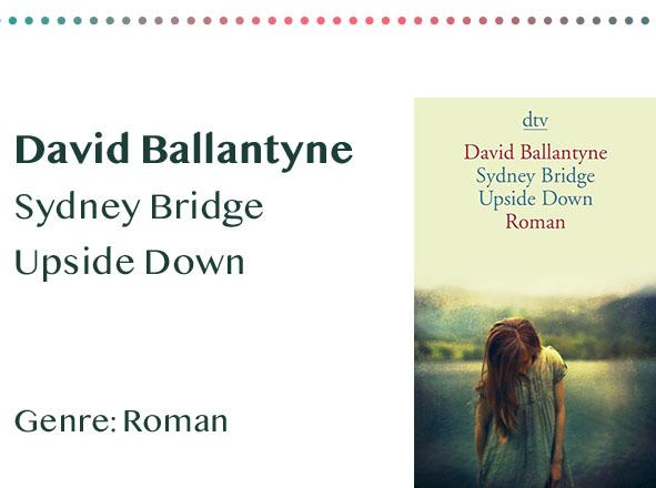 _0015_David Ballantyne Sydney Bridge Upside Down Genre_ Roman Kopie