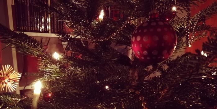 weihnachtsbaum_2018