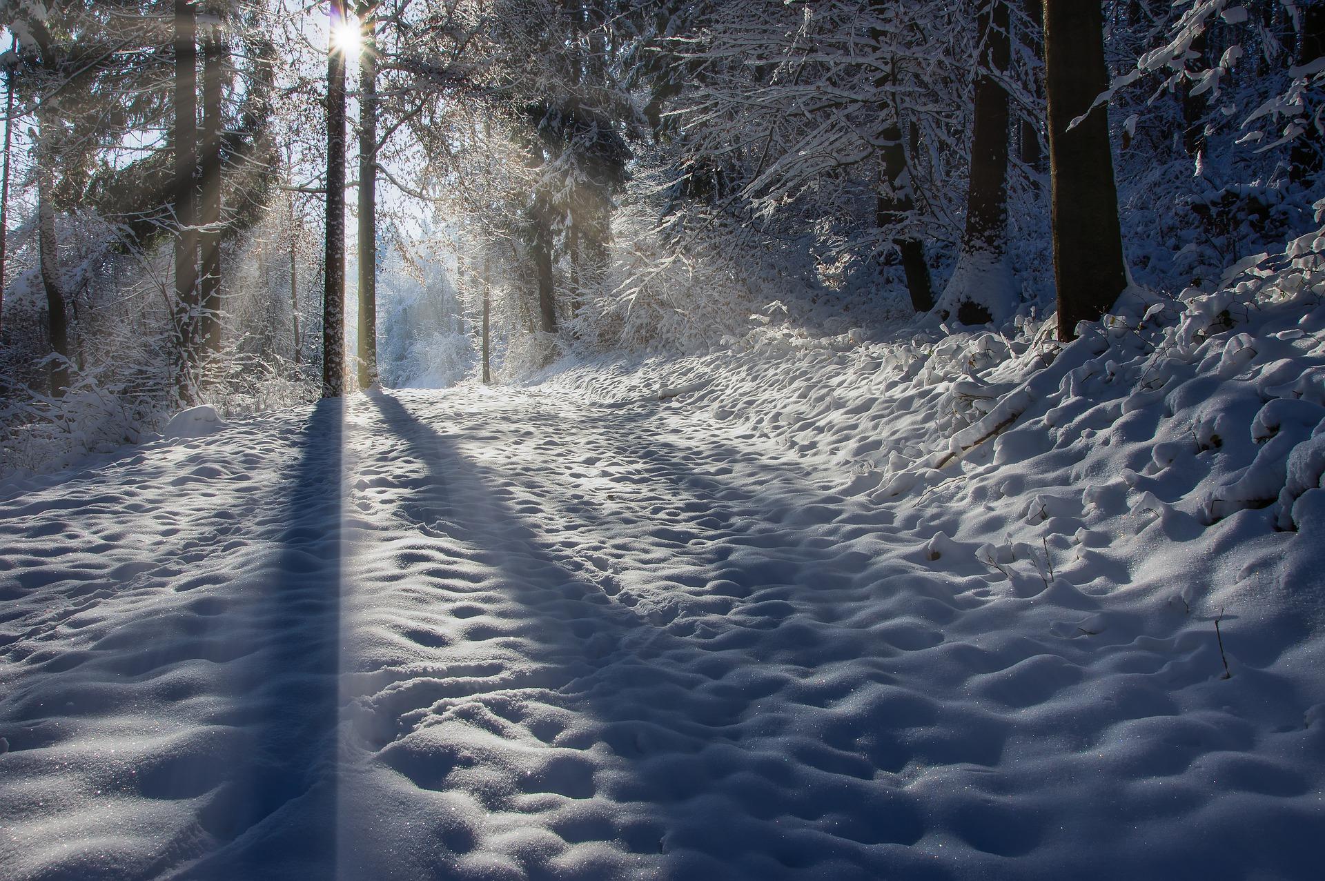 [Writing Friday] Spuren im Schnee